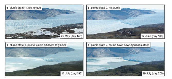 Fig. 1. Illustrations of plume state classification. (a) Plume state=−1, ice tongue present. (b) Plume state= 0, no ice tongue and no surface expression of a plume. (c) Plume state= 1, plume visible adjacent to glacier terminus but is contained within a few hundred metres of the terminus. (d) Plume state= 2, plume visible and flows down-fjord at surface for a number of kilometres.